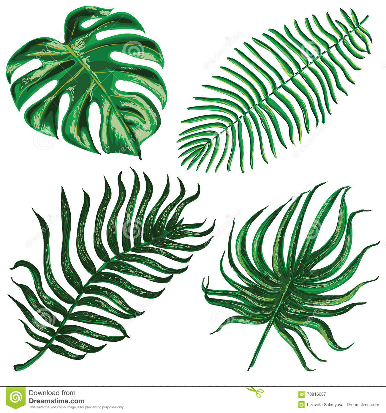 Download Vector Set With Tropical Exotic Leaves Stock Vector - Illustration of floral, ecology: 70816087