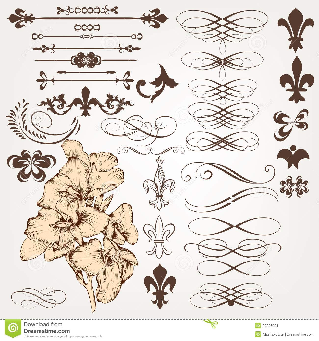 Vector set of vintage calligraphic design elements and for Deco 5 elements
