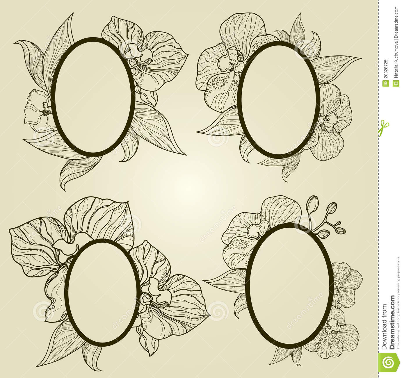 Vector Set Of Vintage Frames With Flowers - Orchid Stock Vector ...