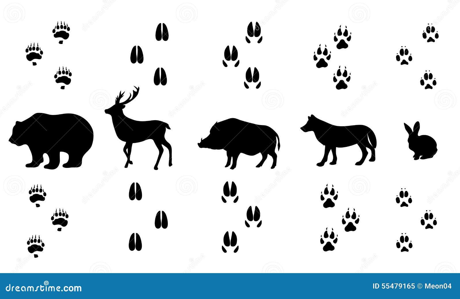 Farmhouse Plan Vector Set Of Walking Wild Wood Animal Tracks Stock Vector