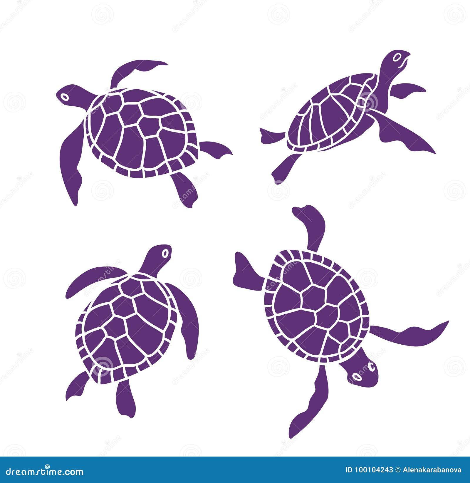 Vector sier oceaanschildpadden op de witte achtergrond