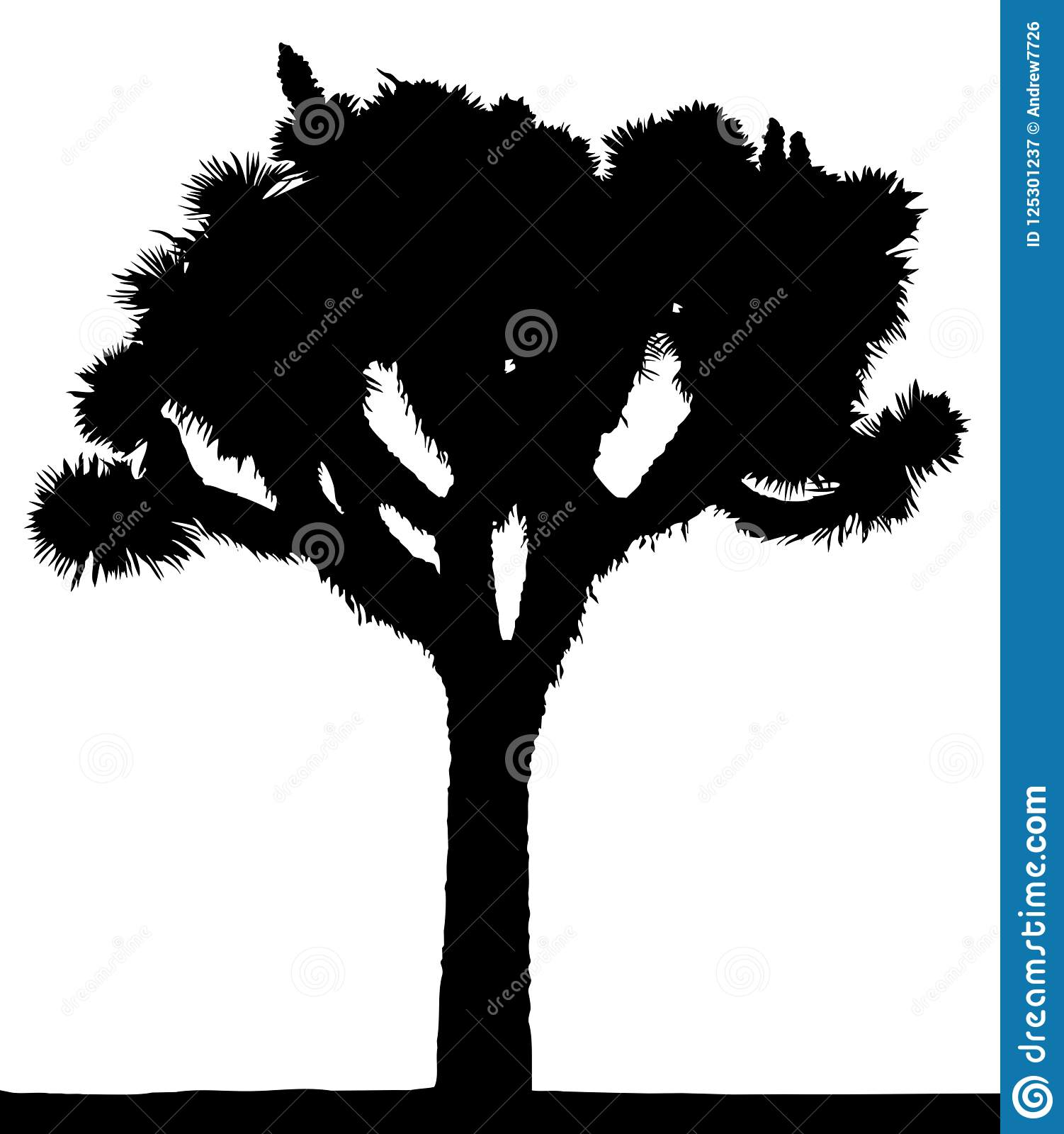 Cartoon Joshua Tree Stock Illustrations 87 Cartoon Joshua Tree Stock Illustrations Vectors Clipart Dreamstime The trunk on the joshua tree is. https www dreamstime com vector silhouette joshua tree isolated white background image125301237
