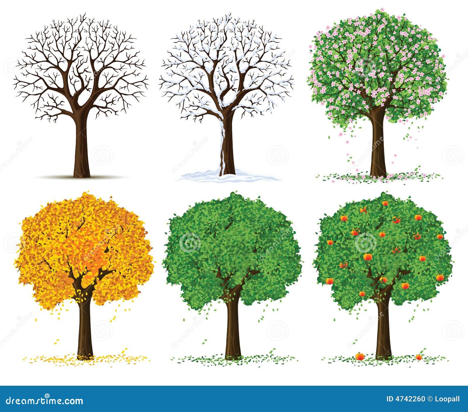Vector Silhouette Season Trees Stock Photo Image 4742260