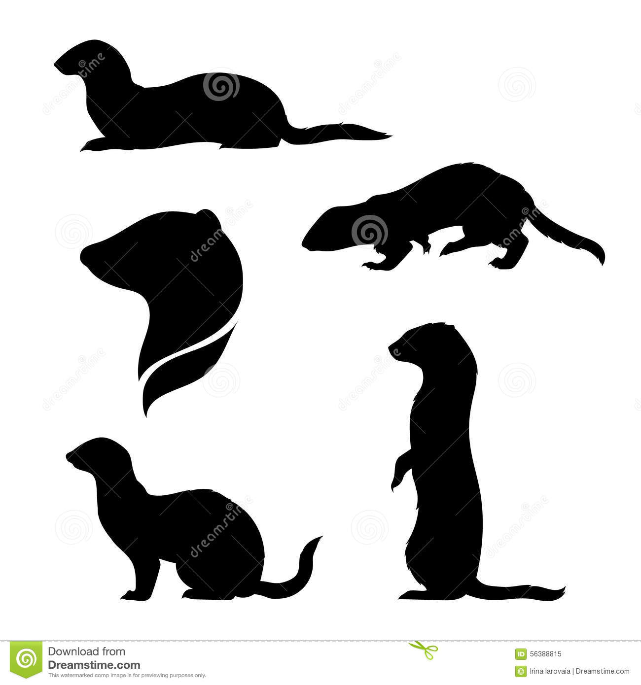 Ferret icons and silhouettes. Set of illustrations in different poses