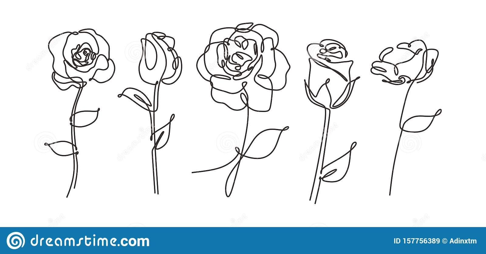 vector single one line drawn set of flowers. Rose flower drawing outline illustration isolated on white background. Botanical