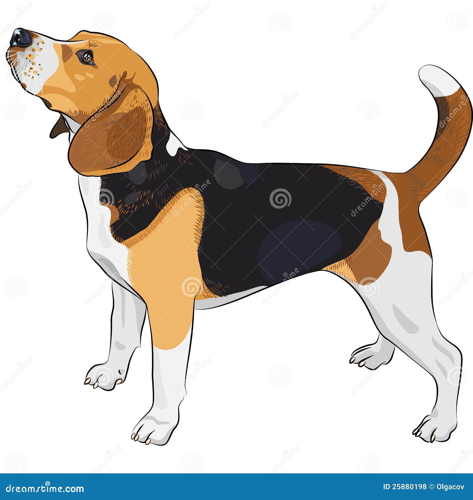 dog clipart royalty free - photo #42