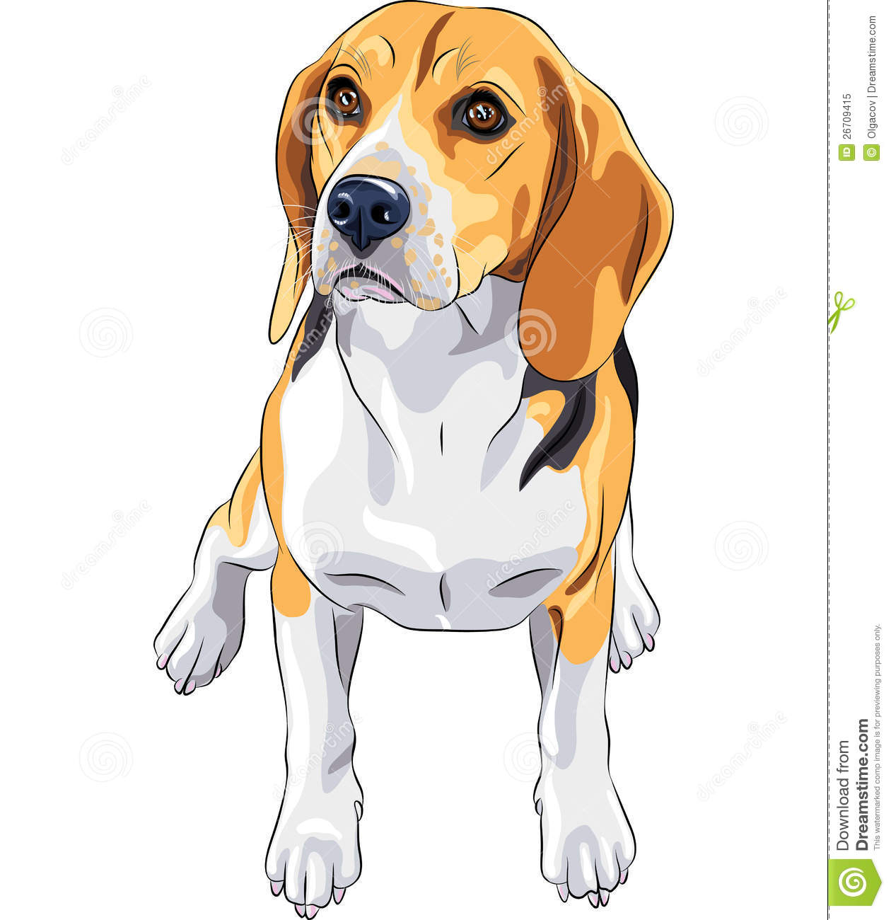 Vector Sketch Dog Beagle Breed Sitting Royalty Free Stock Image