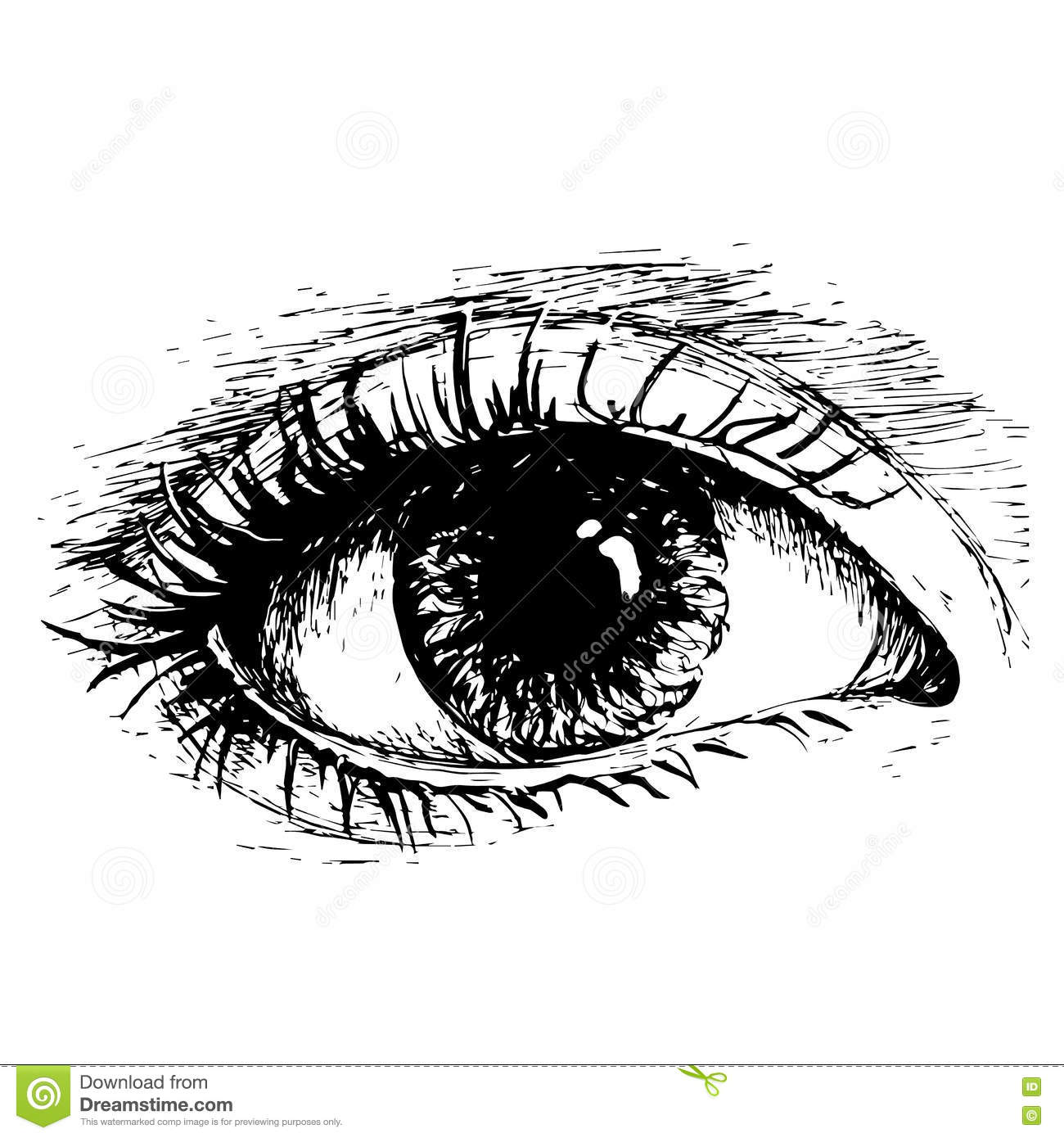Black and white eye drawing-3475