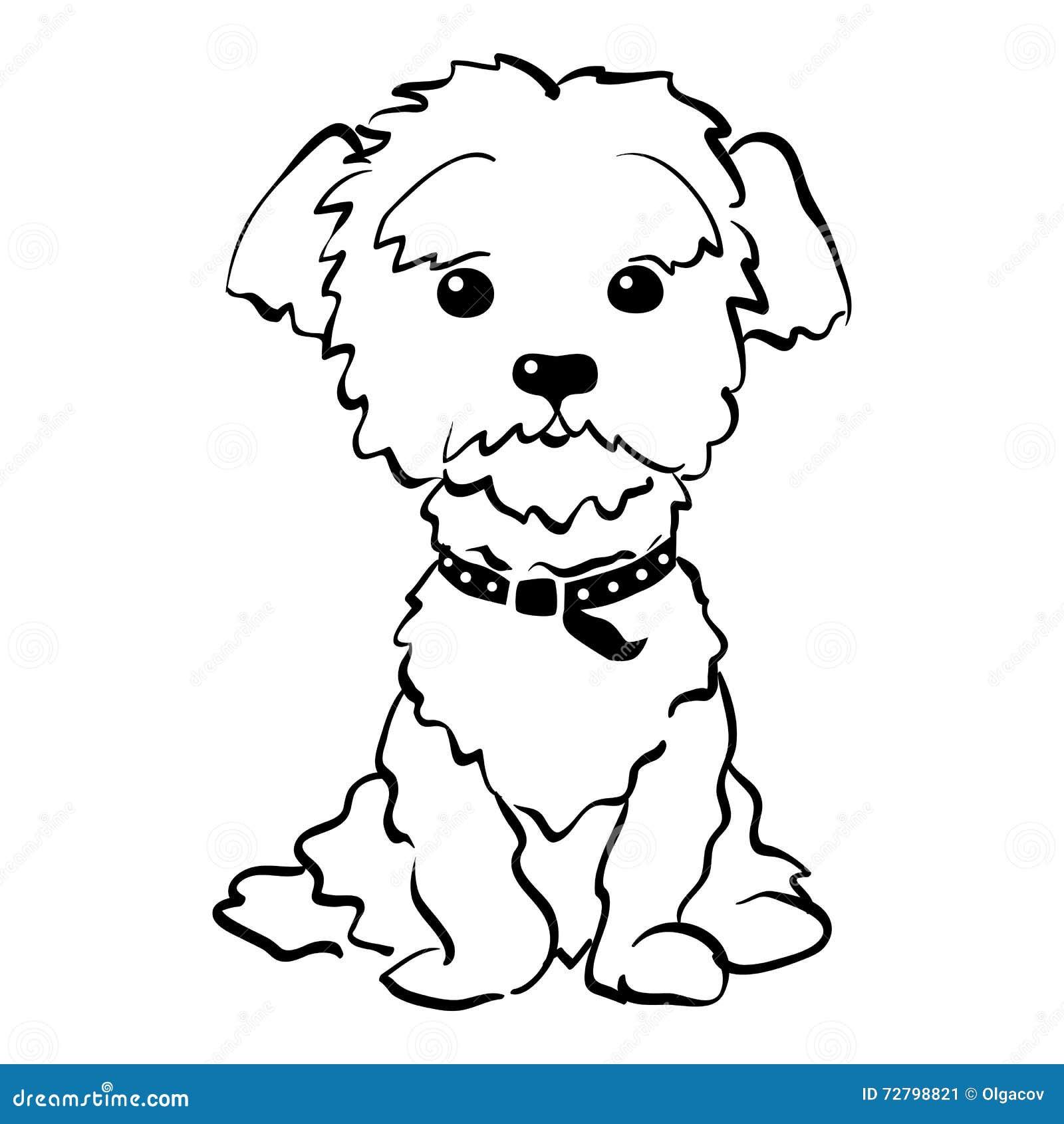 free clipart maltese dog - photo #45