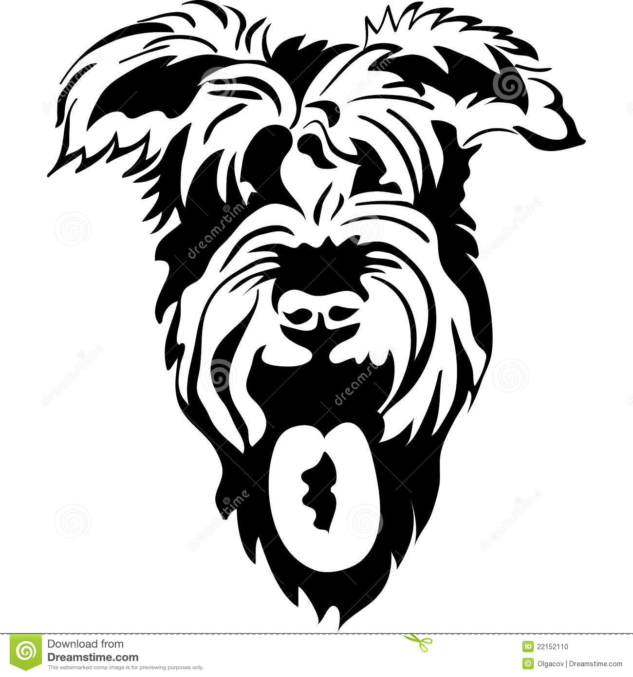Vector black and white sketch of schnauzer closeup, isolated on white ...