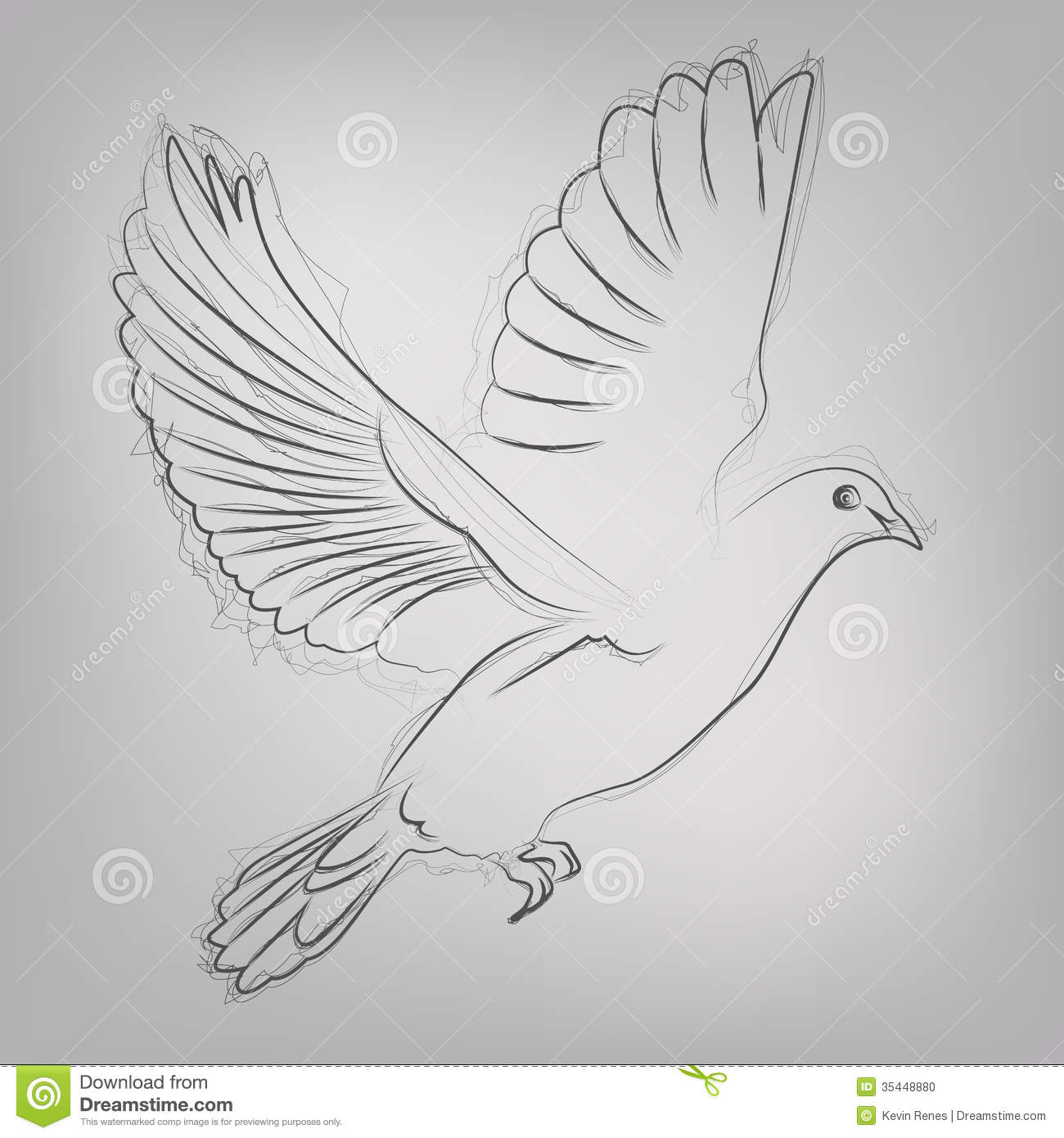 Vector Sketched Dove Stock Vector. Image Of Grace