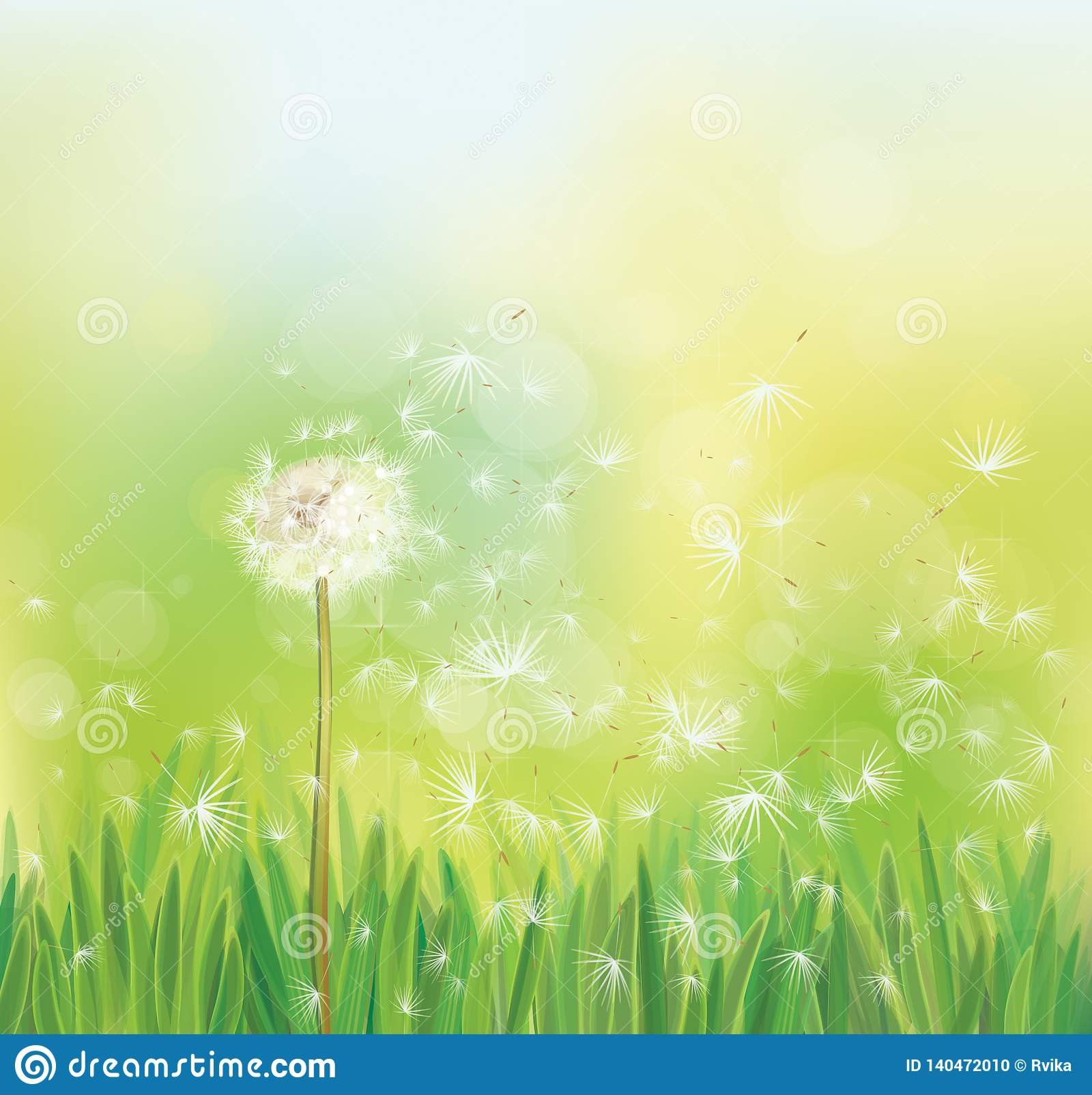 d1c6478940a46 Vector Spring White Dandelion. Stock Vector - Illustration of grass ...