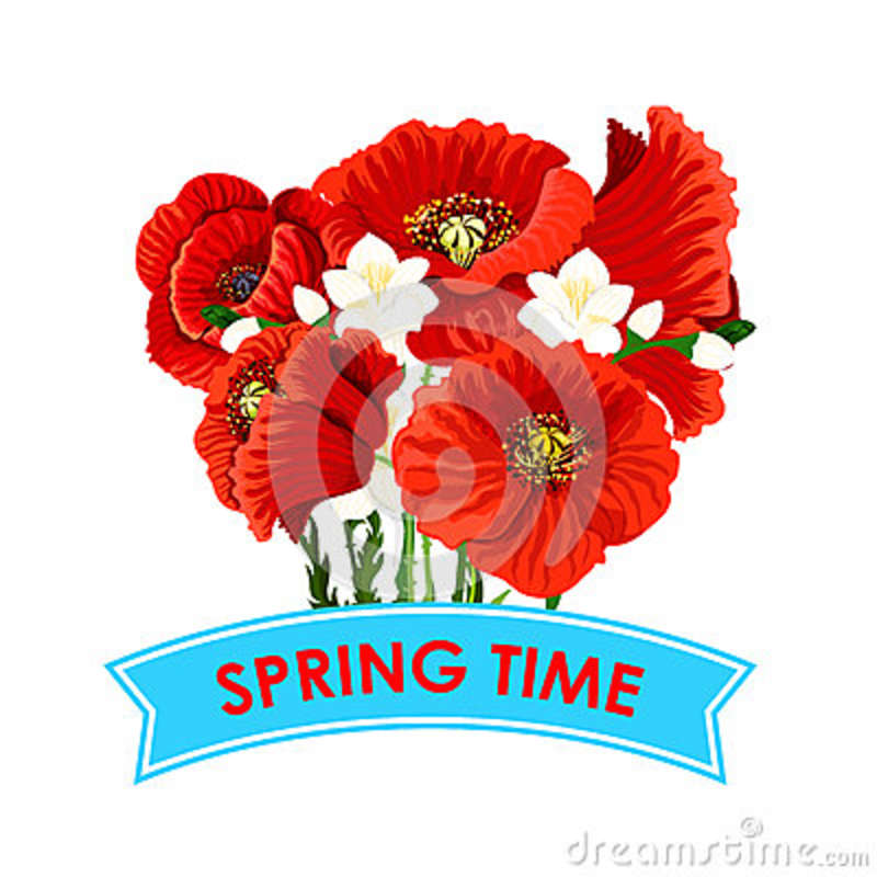 Vector spring time poppy flowers greeting poster stock vector vector spring time poppy flowers greeting poster mightylinksfo