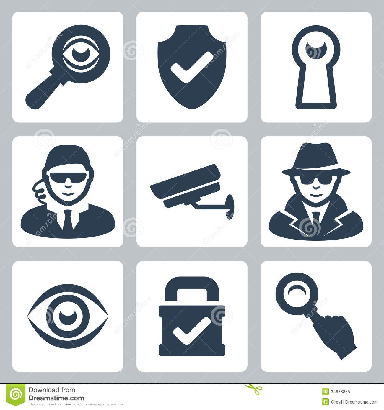 Vector Spy And Security Icons Set Stock Vector ...