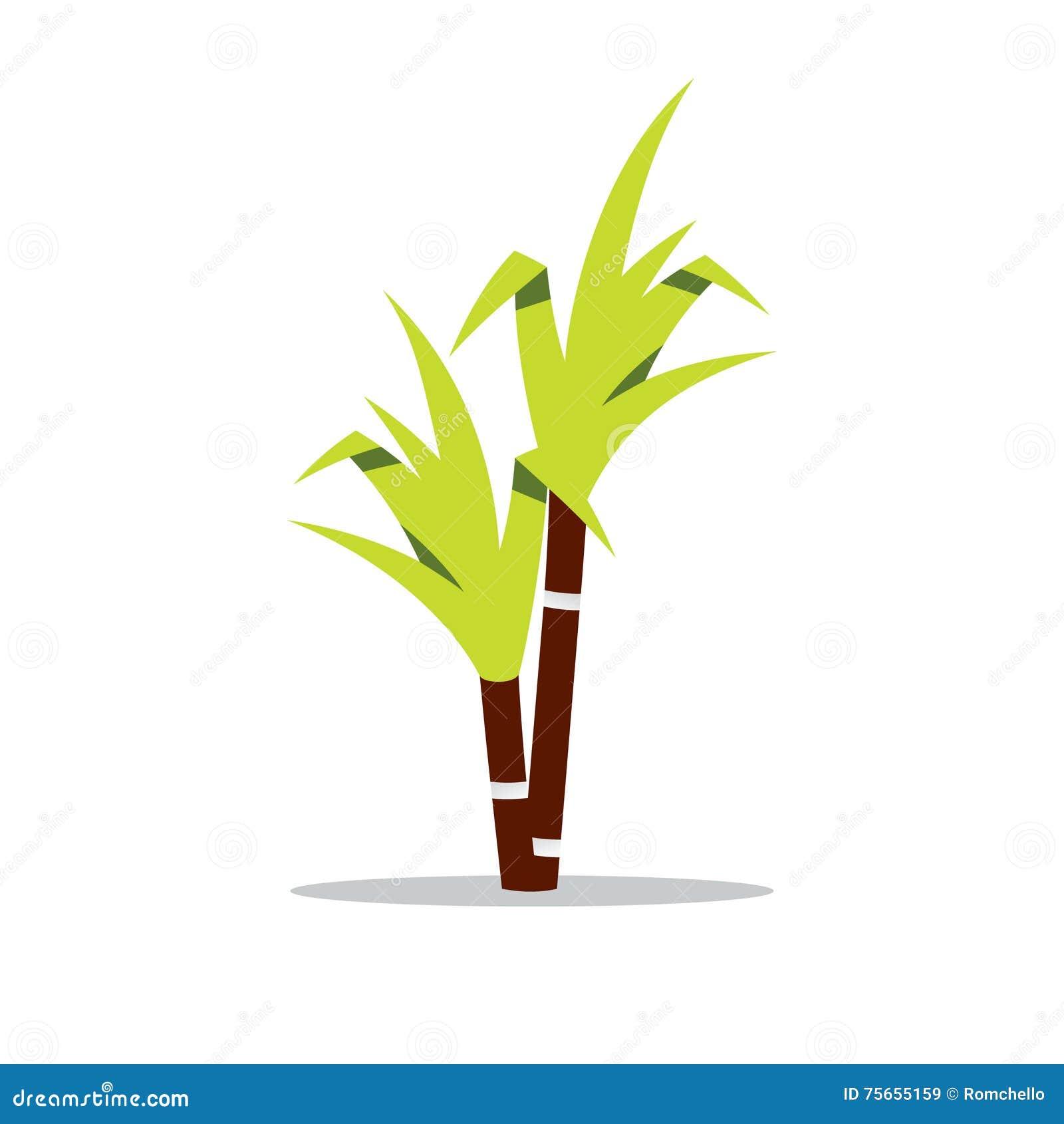 Vector Sugar Cane Cartoon Illustration. Stock Vector - Image: 75655159