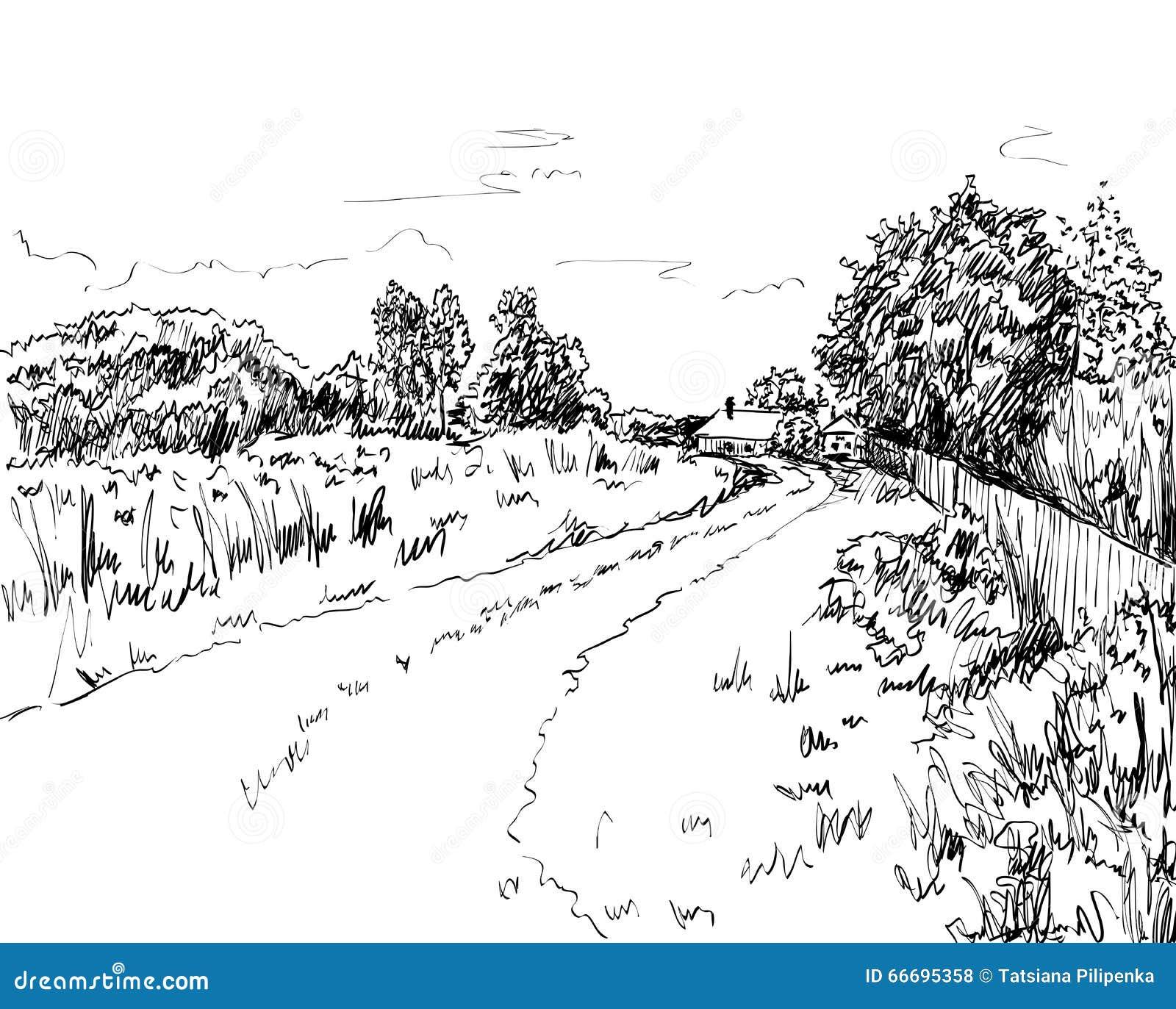 Landscape Illustration Vector Free: Vector Summer Landscape Stock Vector