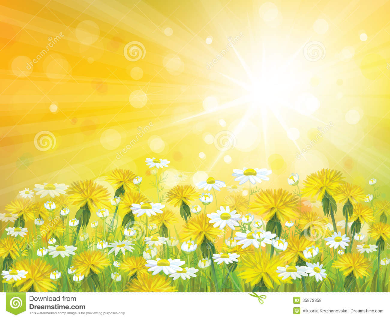 Vector Sunshine Background With Yellow Chamomiles Stock Vector