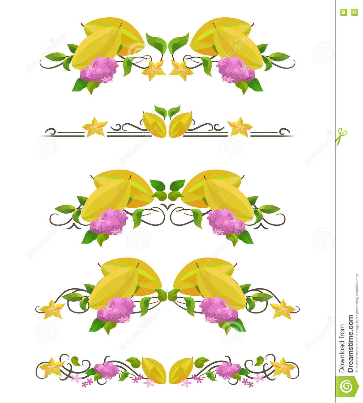 Vector Text Dividers With Carambola And Flower Stock Vector Image