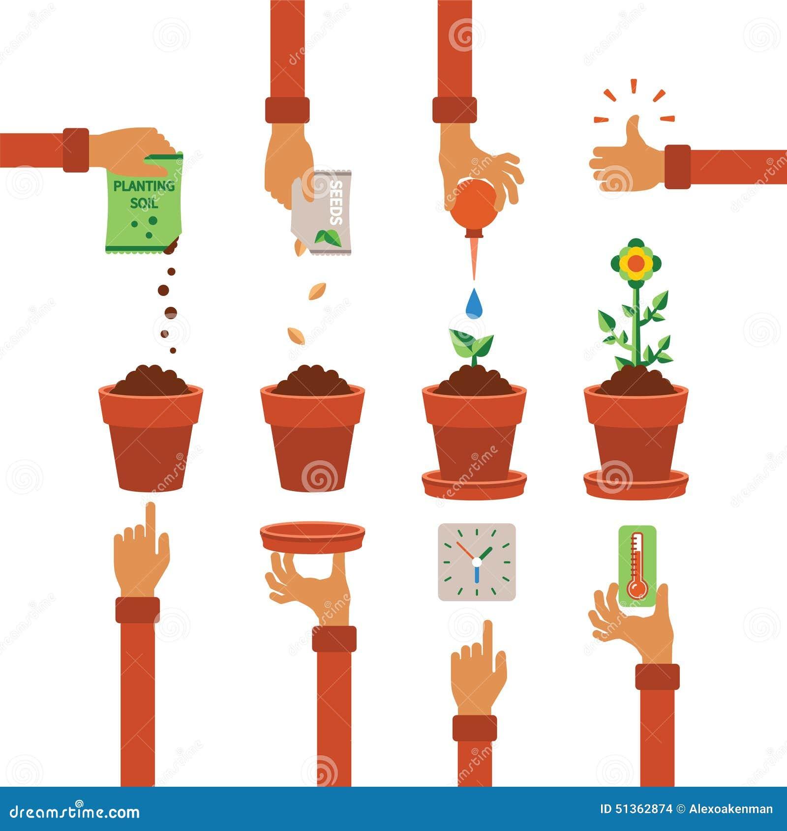 Free Worksheets xl worksheet : Vector Timeline Infographic Concept Of Planting Process ...