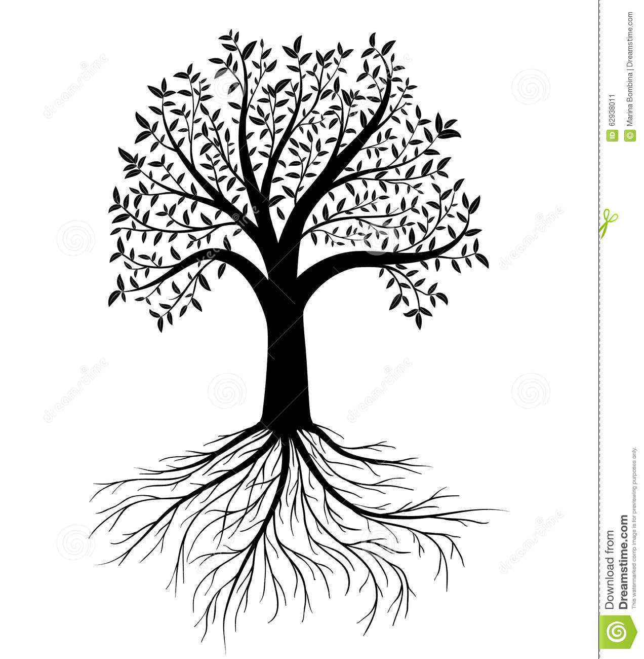 Vector Tree With Leaves And Roots Stock Vector Image