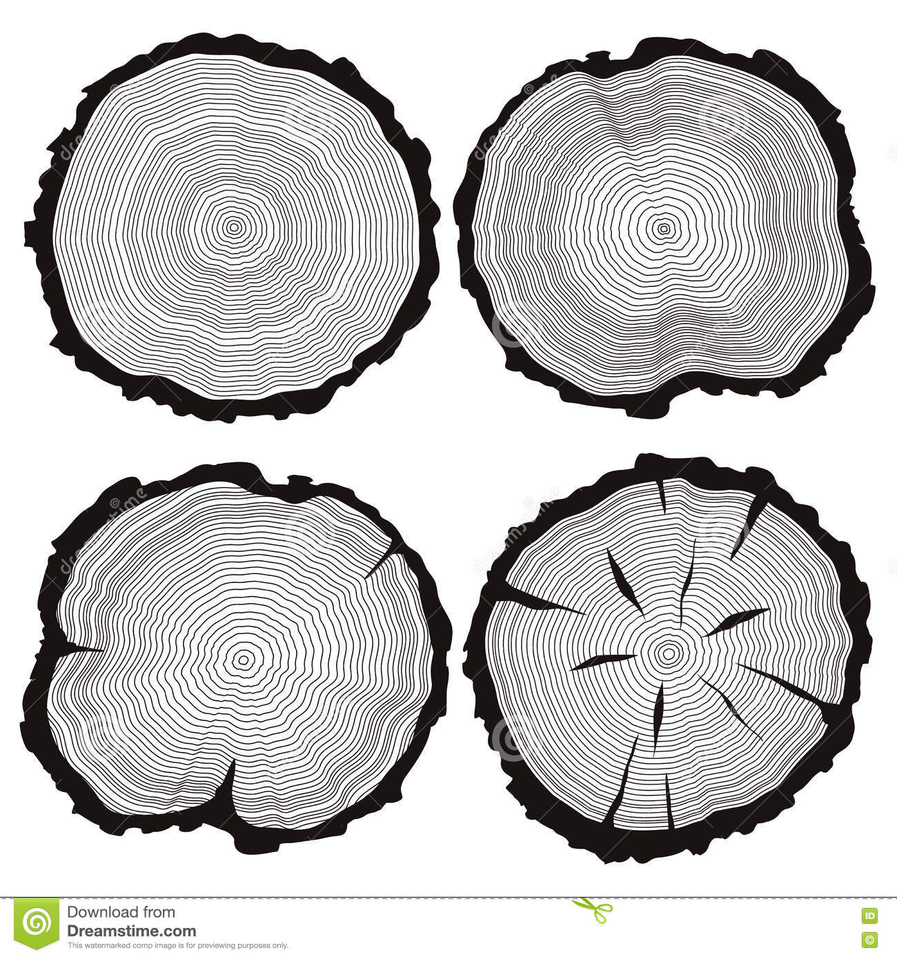 vector tree rings set, concept of saw cut pine, fir-tree trunk, hand drawn  slice, sawmill flat icons, wooden texture illustration isolated on white