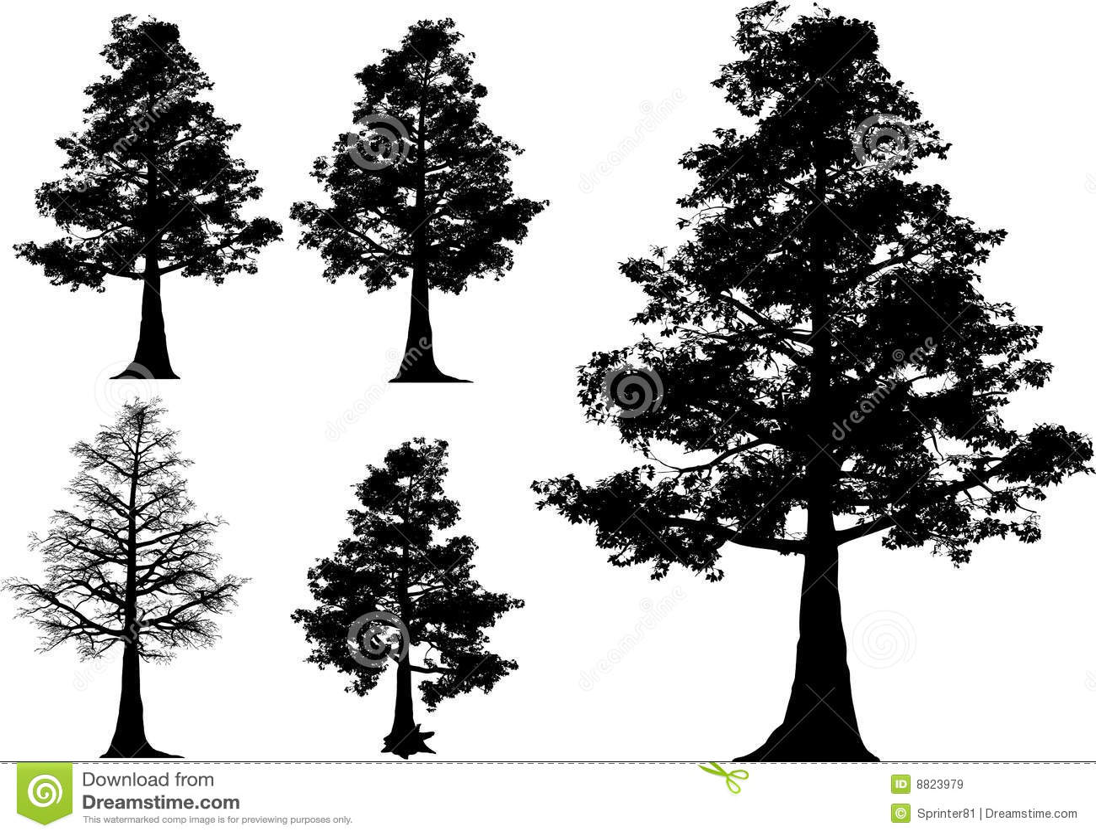 Vector Illustration Tree: Vector Trees Stock Vector. Illustration Of Branch, Grass
