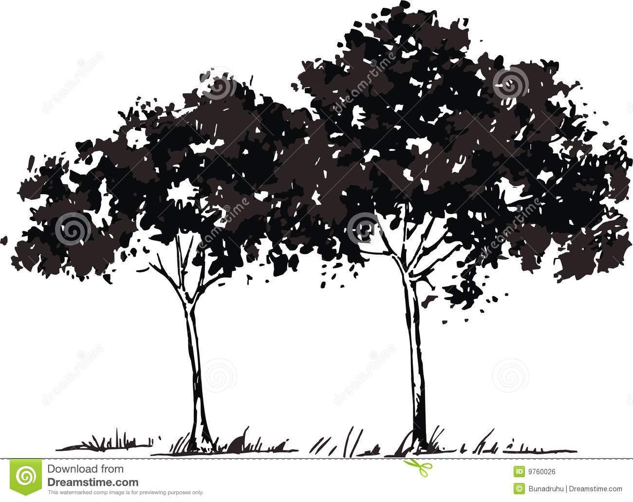 Vector Trees Royalty Free Stock Image - Image: 9760026 - photo#41