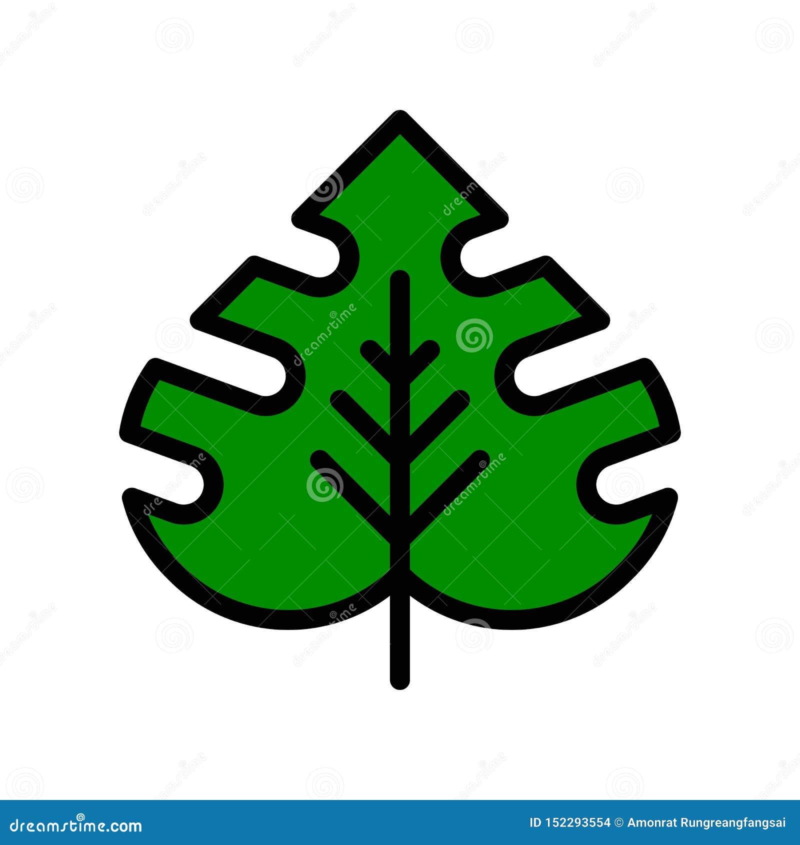 Vector tropical de la hoja, icono llenado relacionado tropical del estilo
