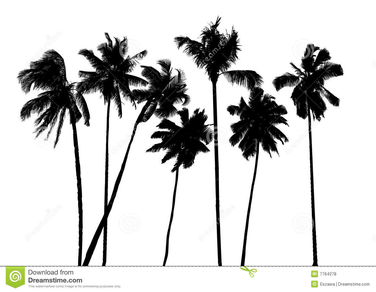 Vector Tropical Palms Royalty Free Stock Photos - Image: 7764278