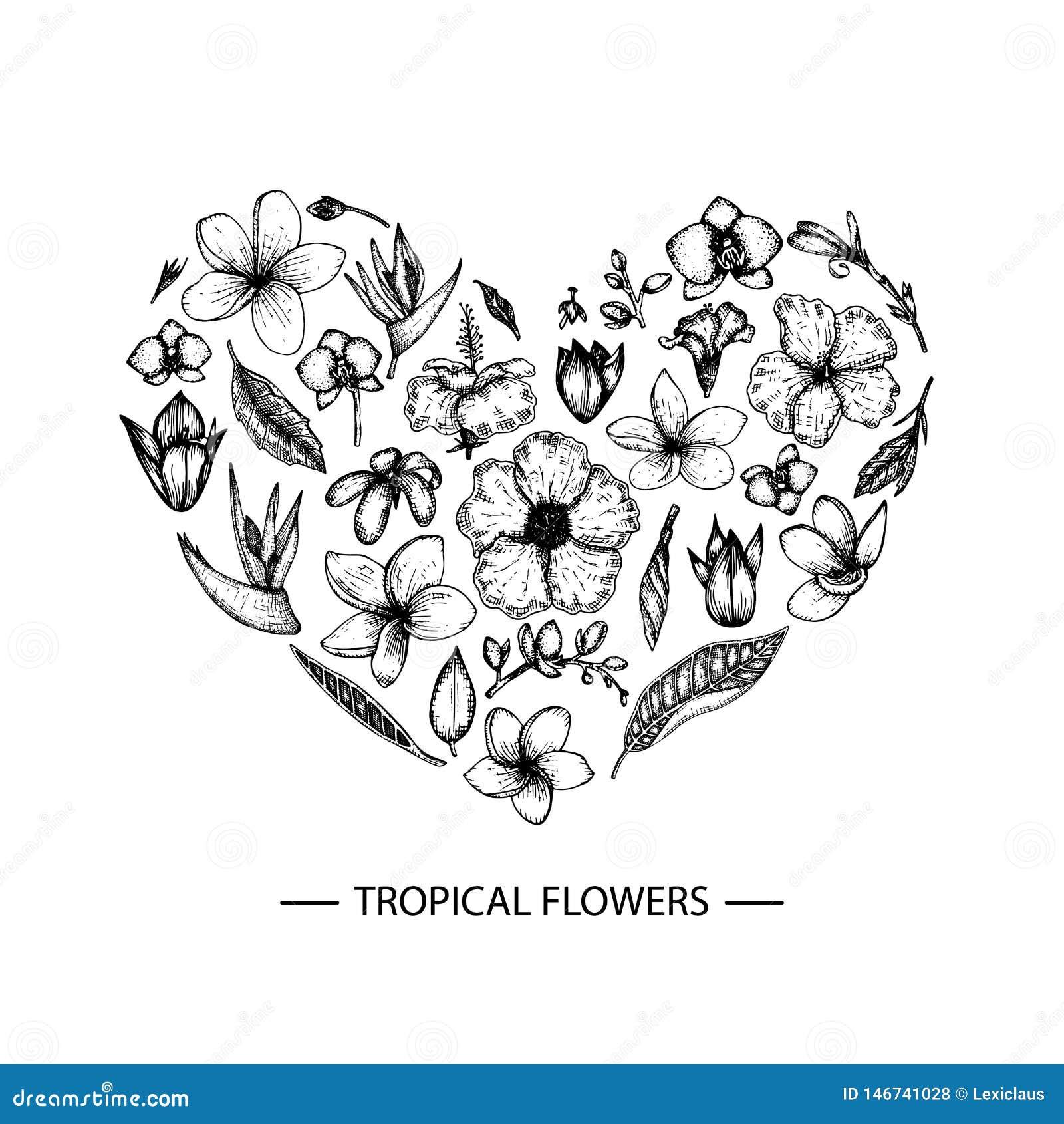 Vector tropische die bloemen in een hartvorm worden geplaatst