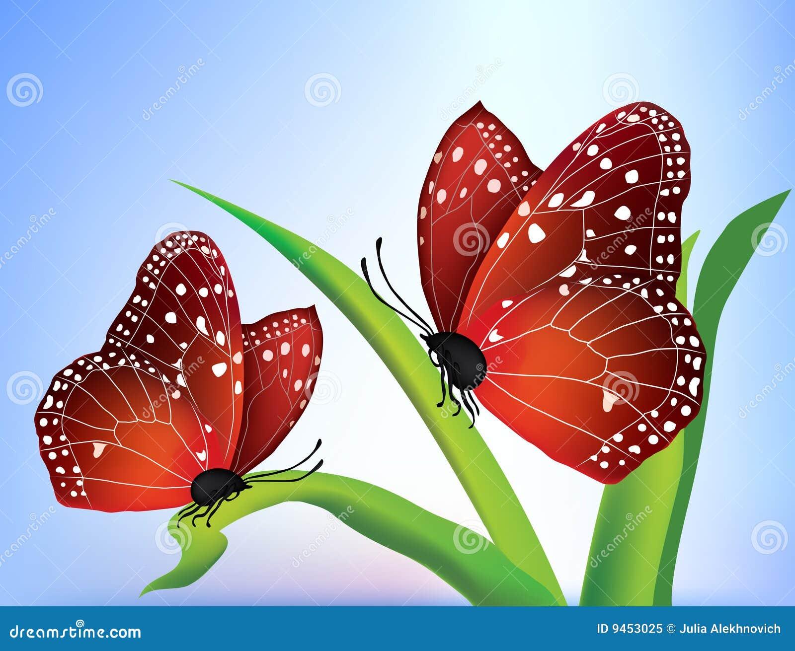 Vector two butterflies