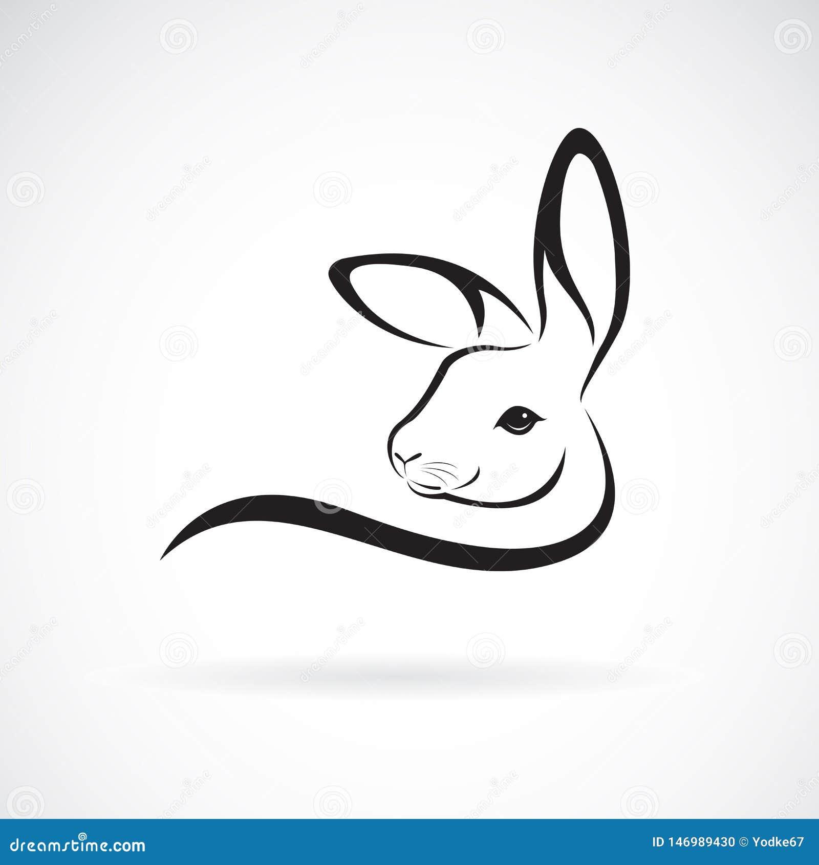 Vector van een konijn hoofdontwerp op witte achtergrond Wilde dieren Konijnembleem of pictogram Gemakkelijke editable gelaagde ve