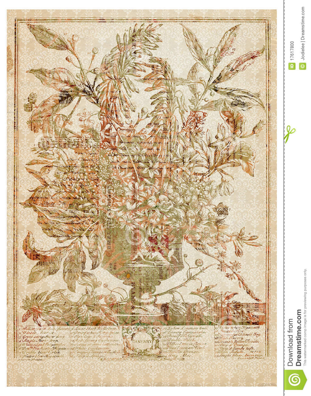 essay describing flower Garden means 'a piece of ground, often near a house, used for growing flowers, fruit, or vegetables' synonyms of garden are park - yard - pleasure ground.