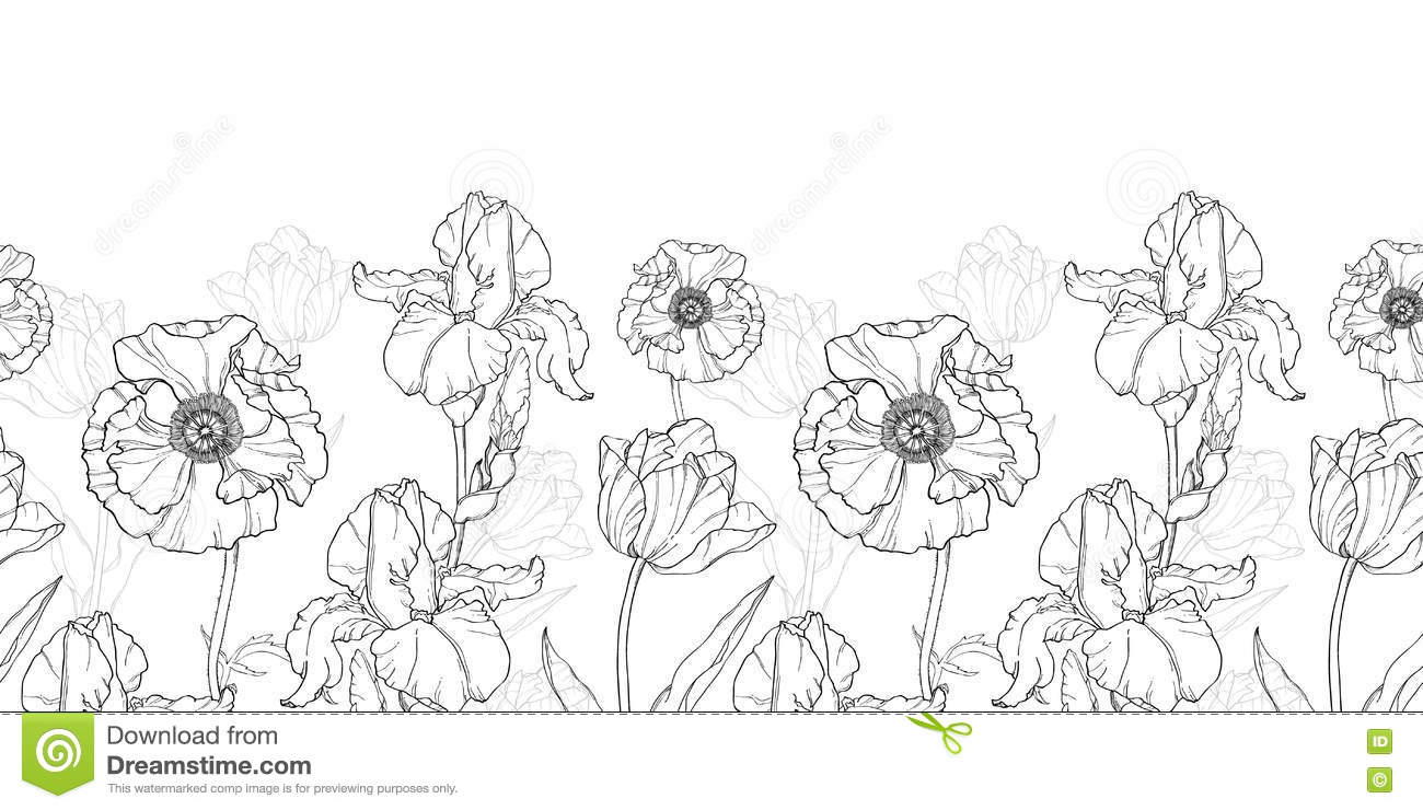 Download Vector Vintage Black White Flowers Drawing Horizontal Border Seamless Repeat Pattern Stock