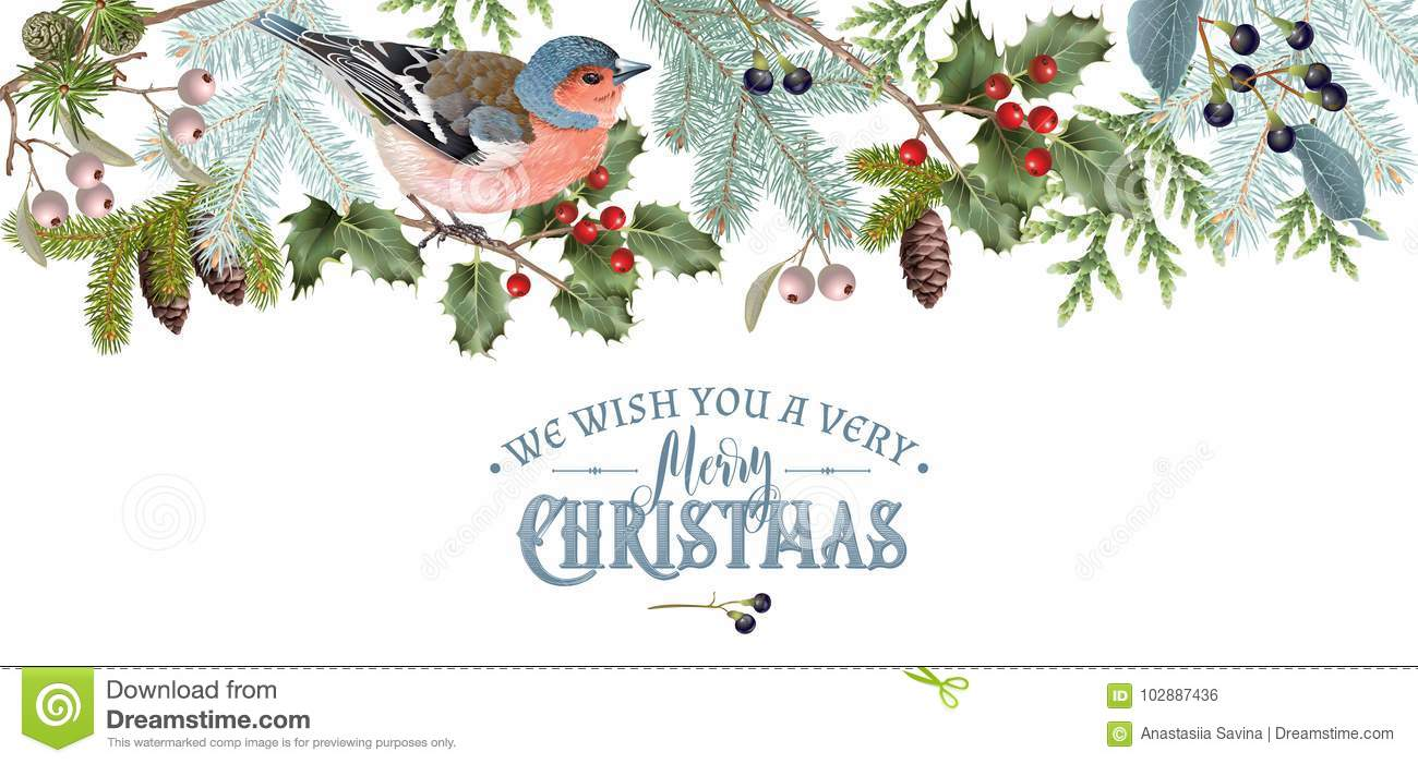 Bird Christmas border