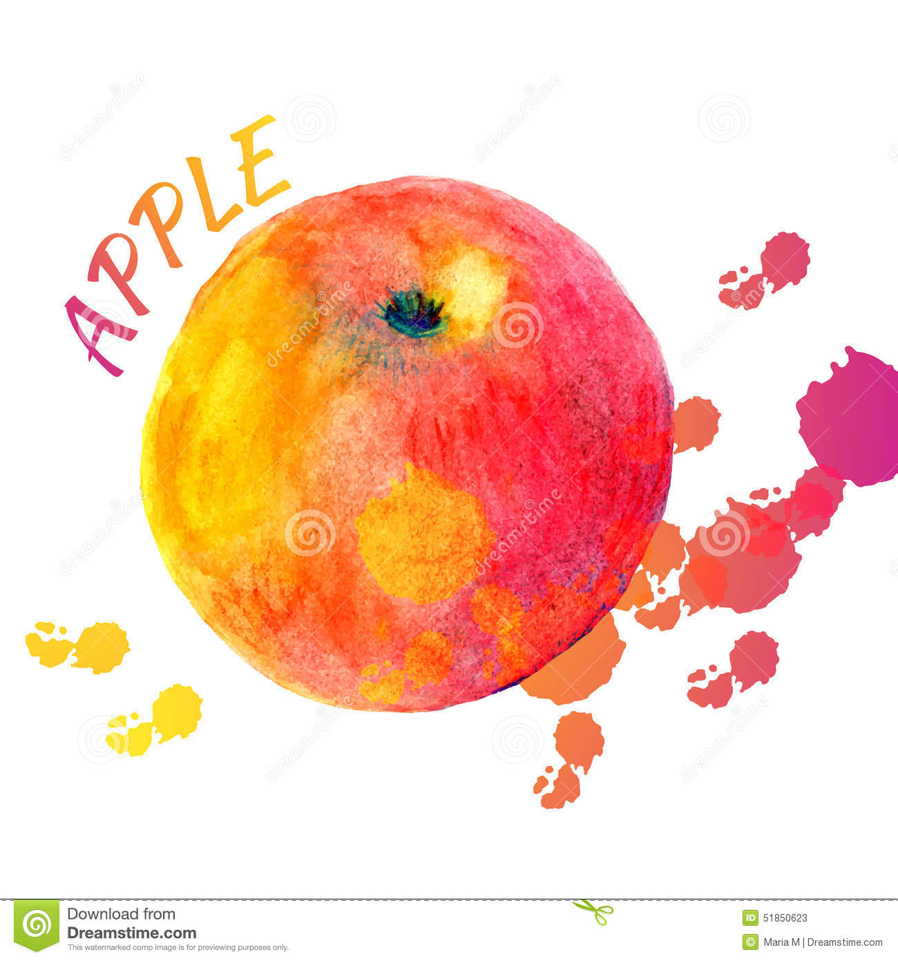 Vector Watercolor Apple Of Color Splashes On White ...