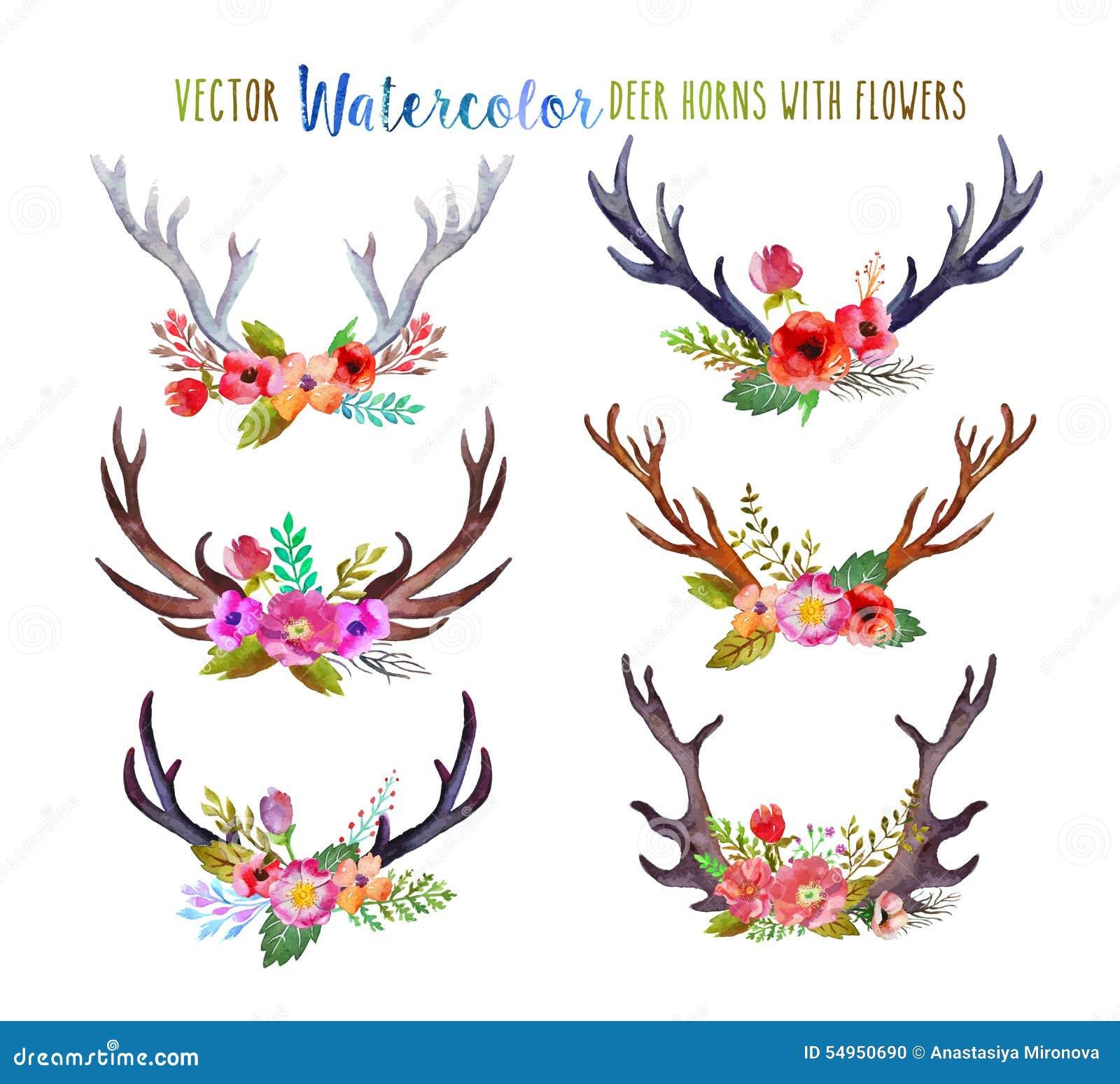 Vector watercolor deer horns stock vector image 54950690