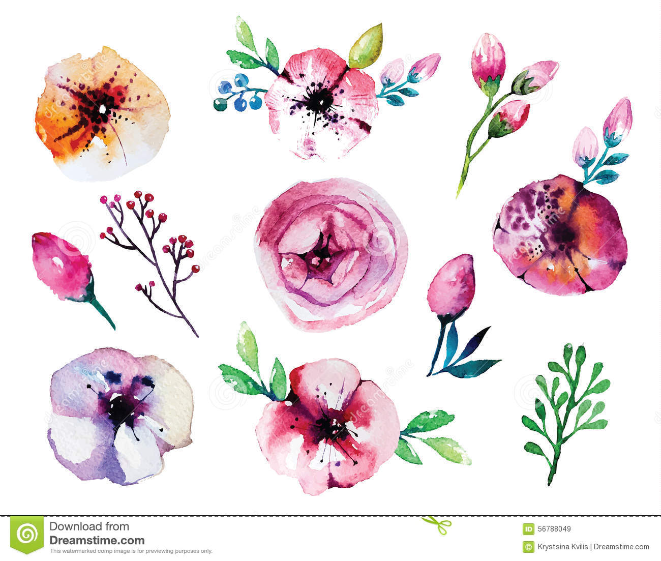 Vector watercolor hand drawn floral set. Colorful floral collection ...