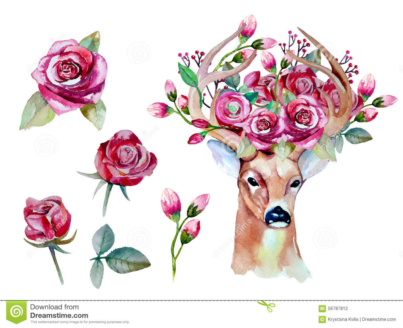Vector Watercolor Hand Drawn Floral Set With Deer Stock