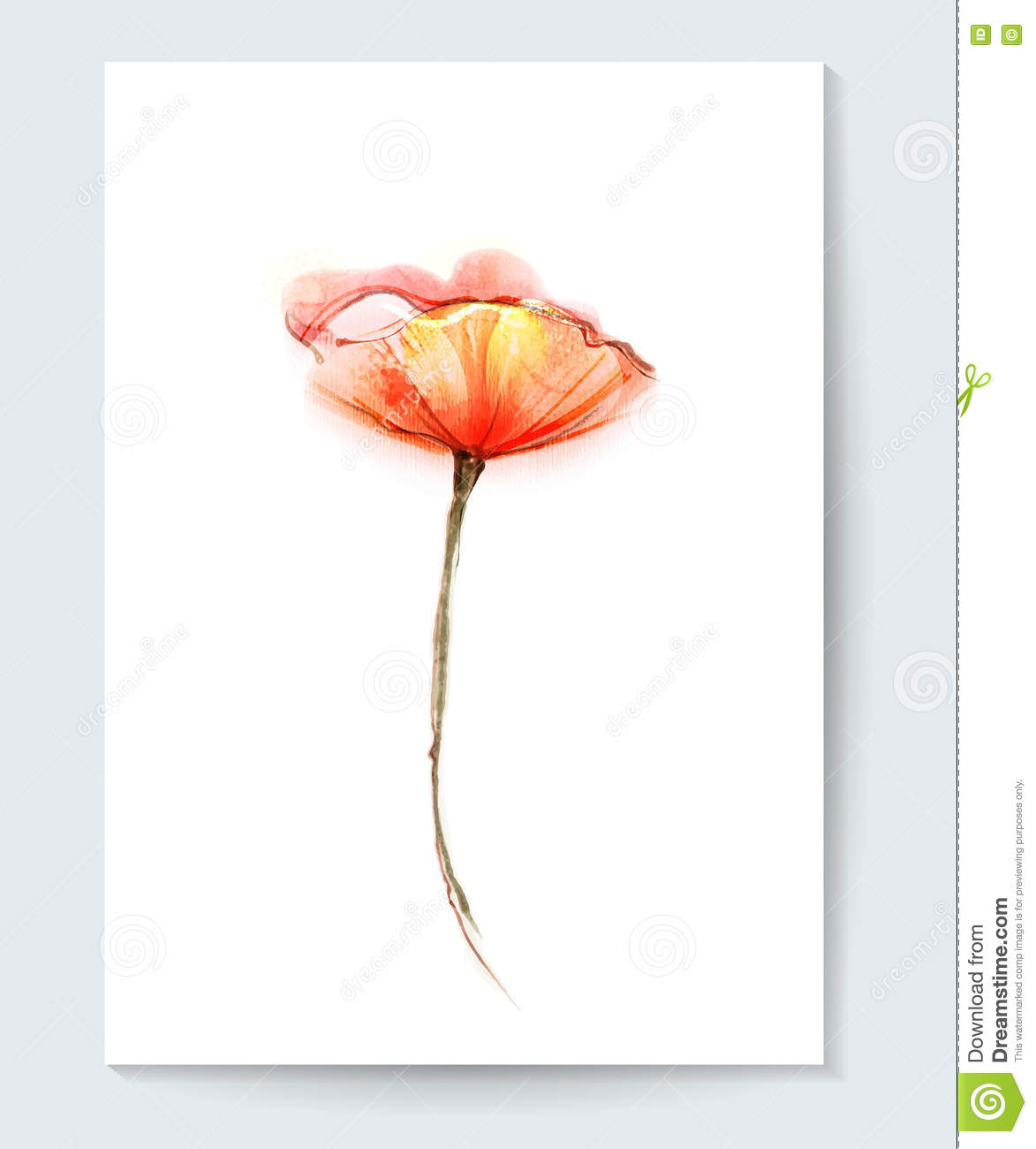 Vector watercolor painting poppy flower red poppy flower background vector watercolor painting poppy flower red poppy flower background for greeting card water color flower vector isolated on white background m4hsunfo