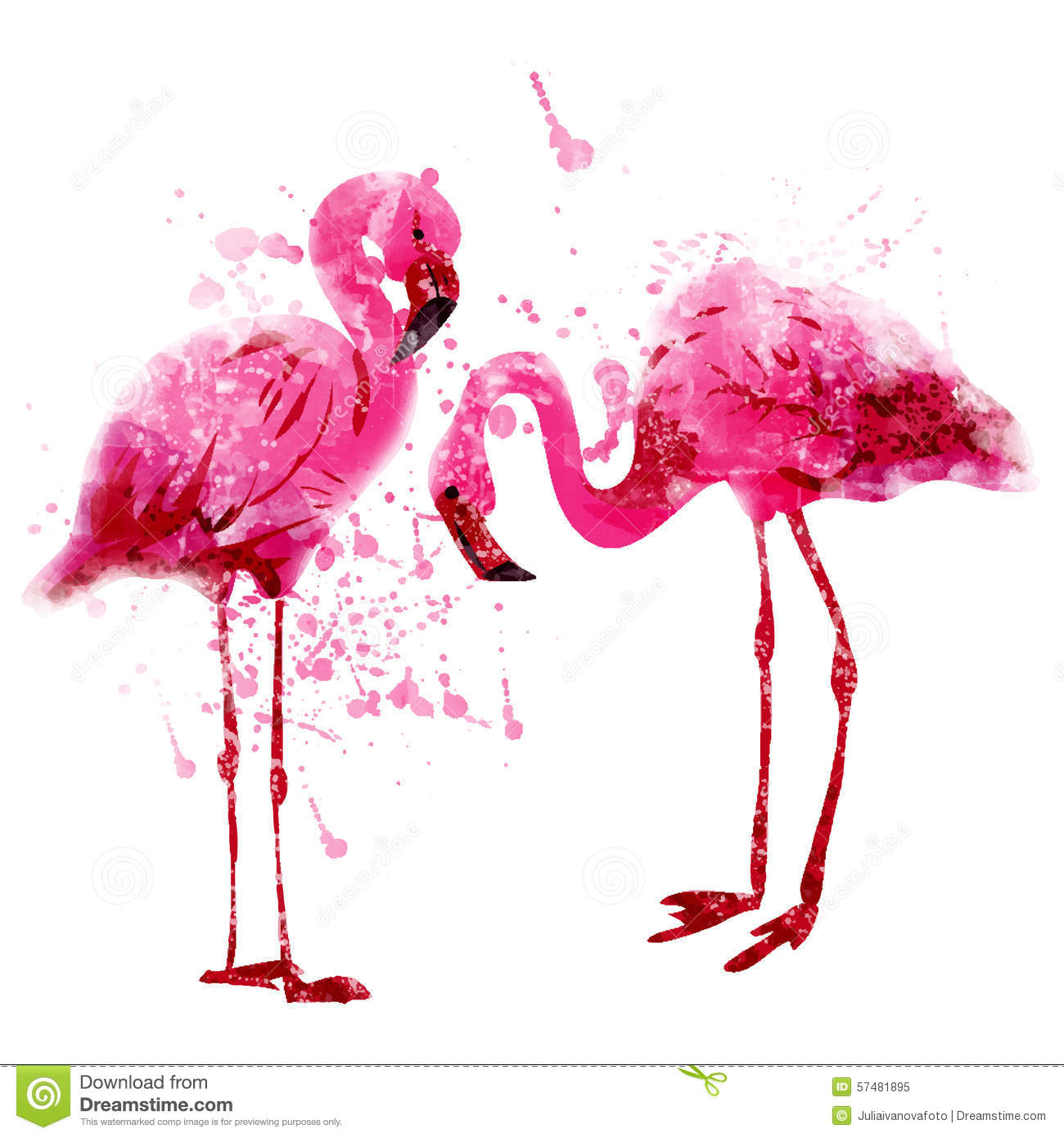 Vector Watercolor Pink Flamingo Couple In Splashes Stock