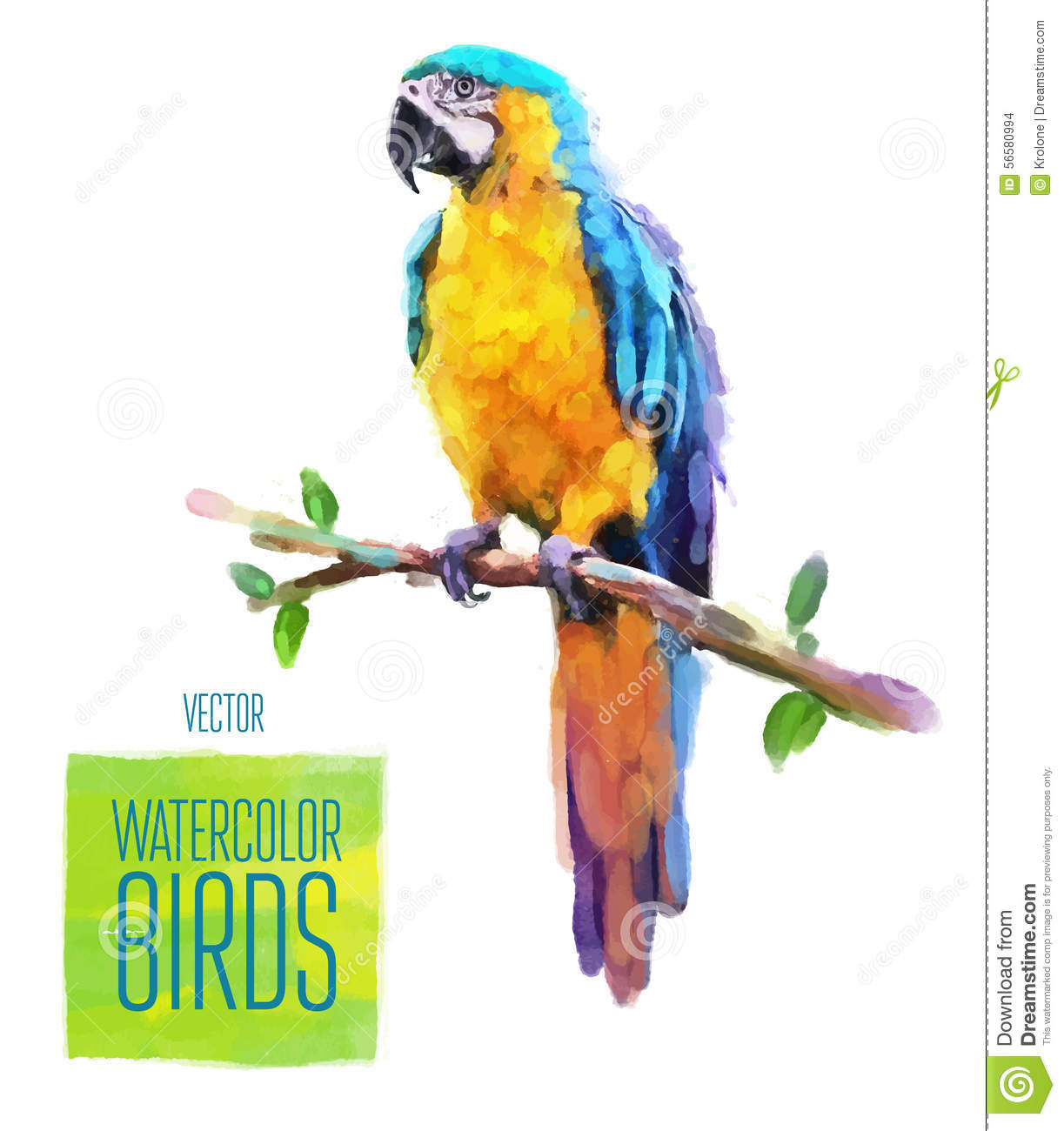 red green macaw ara parrot on branch isolated watercolor illustration royalty free cartoon. Black Bedroom Furniture Sets. Home Design Ideas