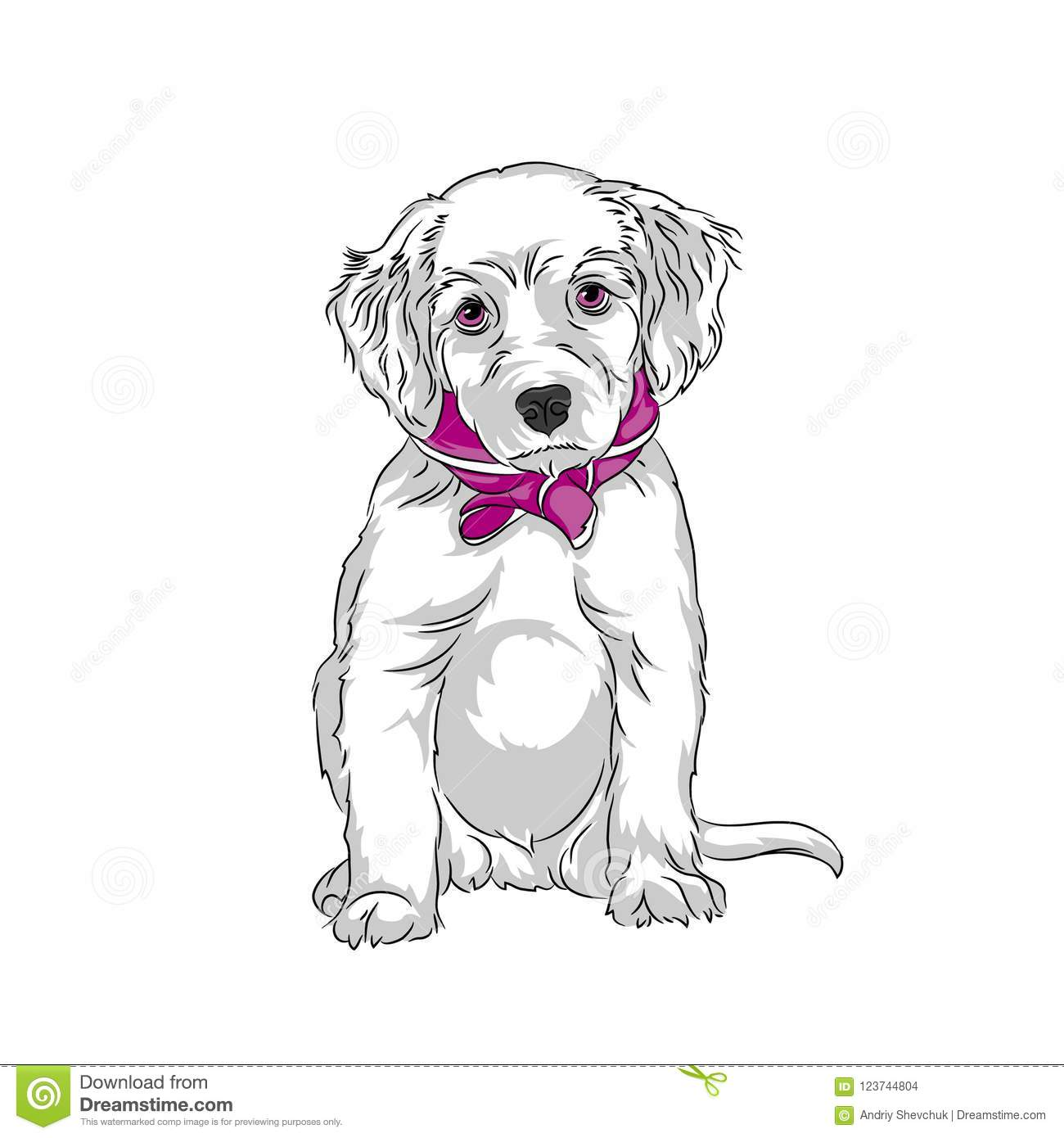 Puppy Labrador Sitting Vector White Dog Stock Vector Illustration Of Friend Drawing 123744804