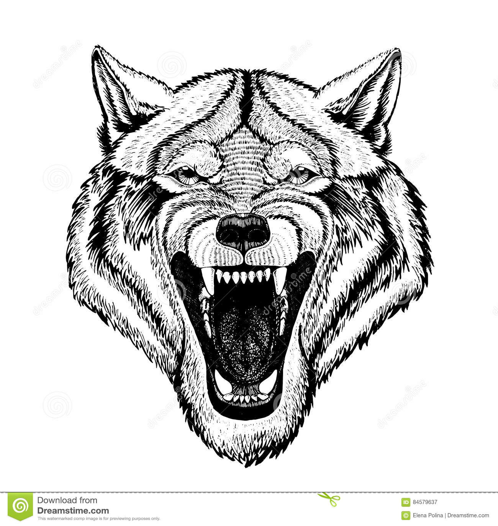 Vector wild wolf for tattoo, t-shirt, sport logo