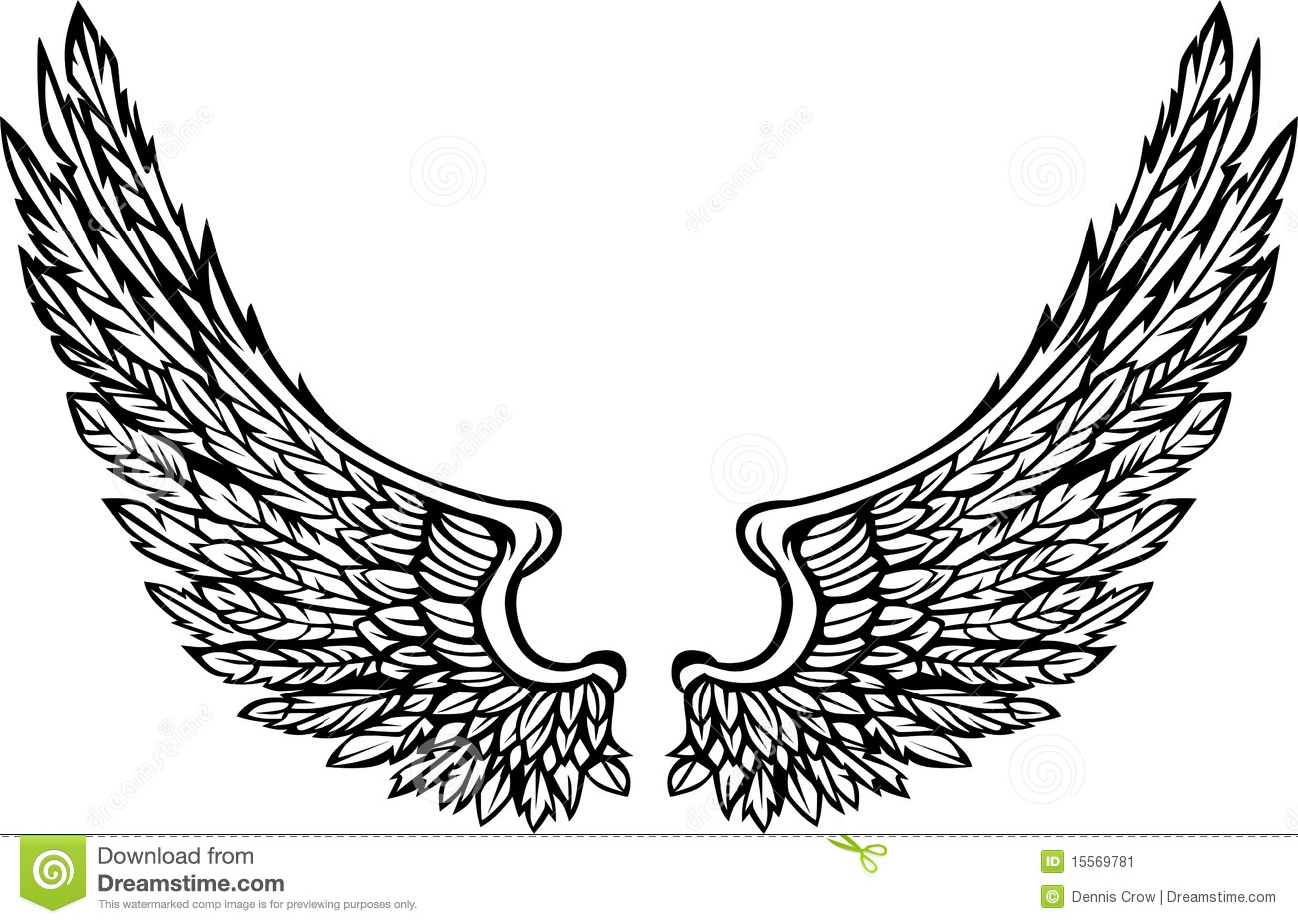 Eagle Or Angel Wings Stock Vector Illustration Of Isolated 43008319