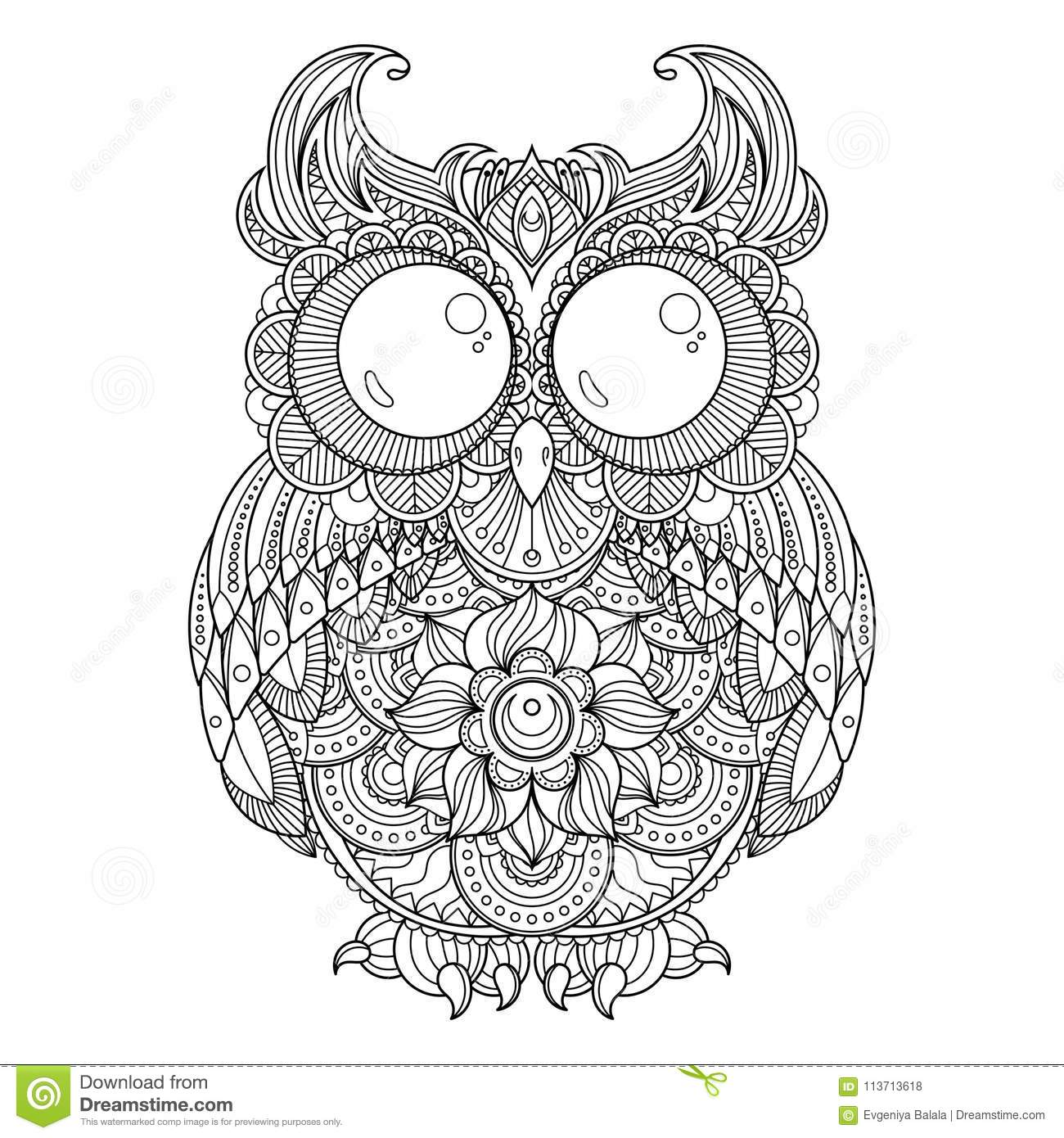 vector zendoodle ornate owl illustration picture coloring pages printing antistress books cute patterned funny bird