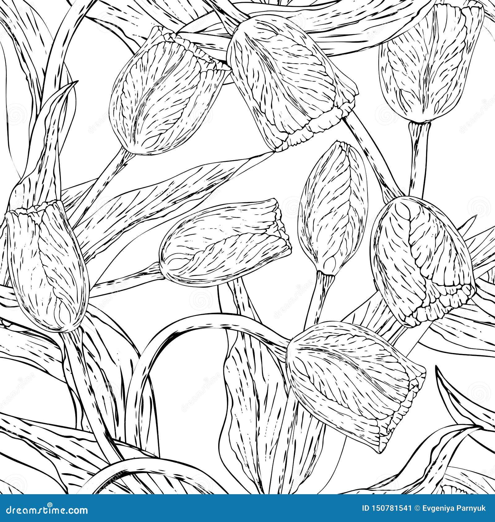 Vector zwart-wit bloemen naadloze patroonwhit tulp