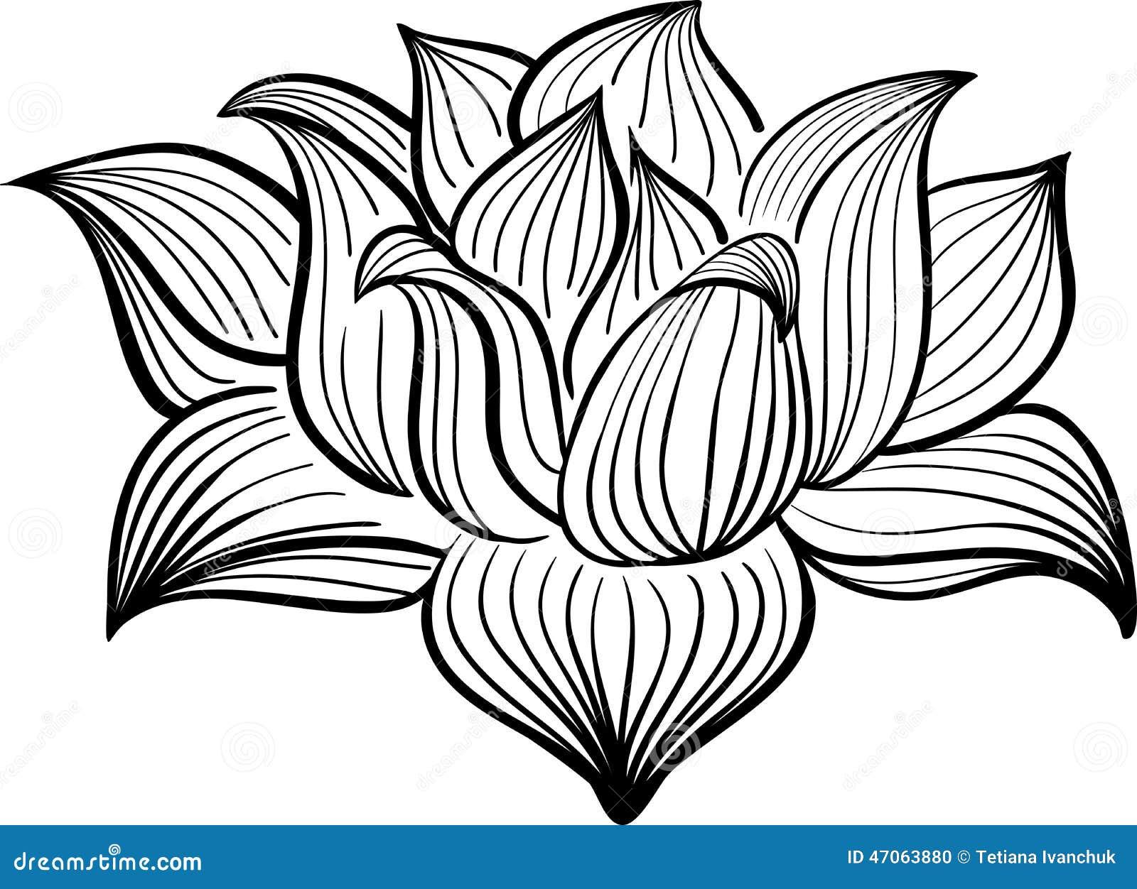 Vector Zwart-witte Lotus-bloem
