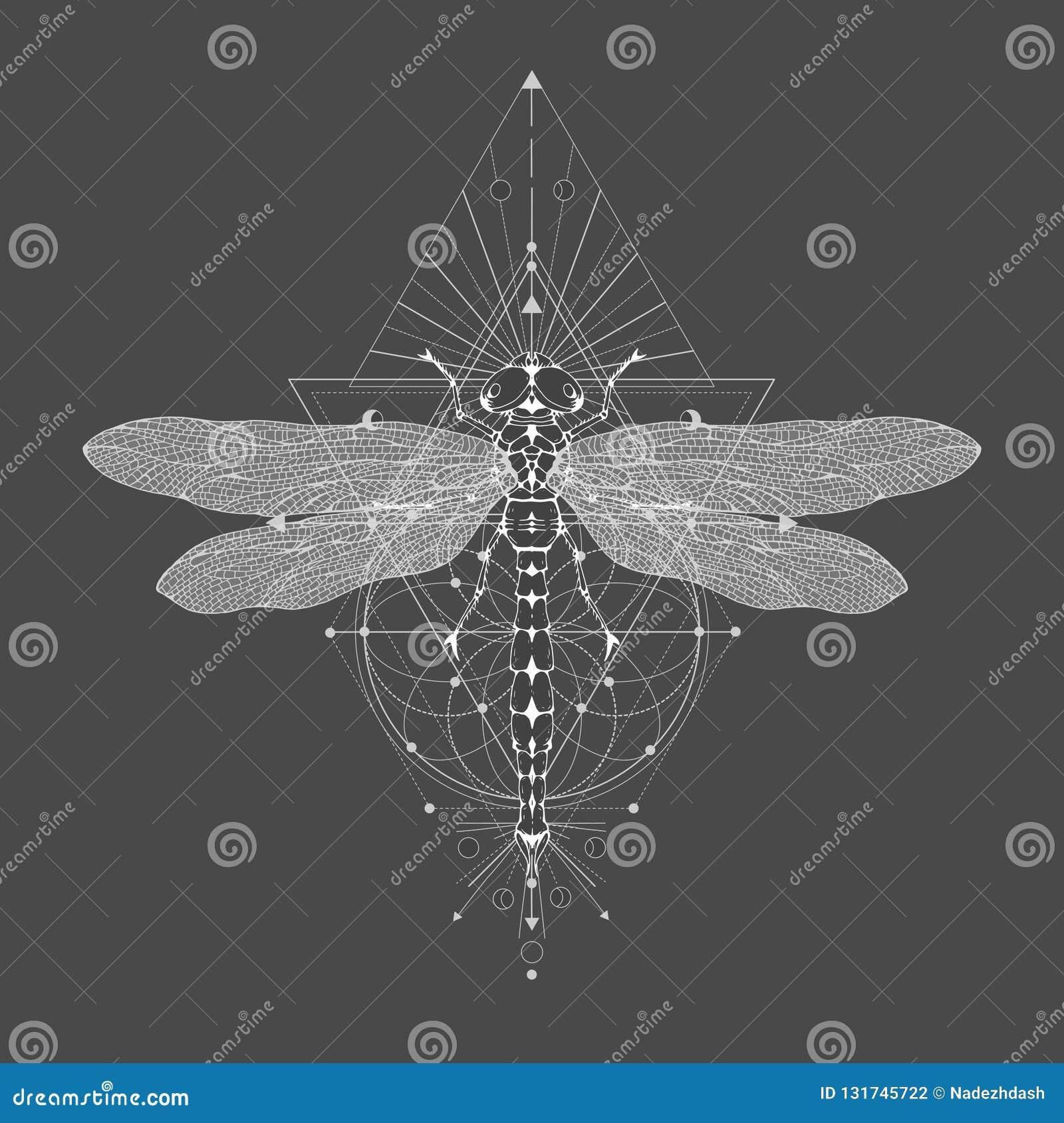 Vectorillustratie met hand getrokken libel en Heilig geometrisch symbool op zwarte uitstekende achtergrond Abstract mysticusteken