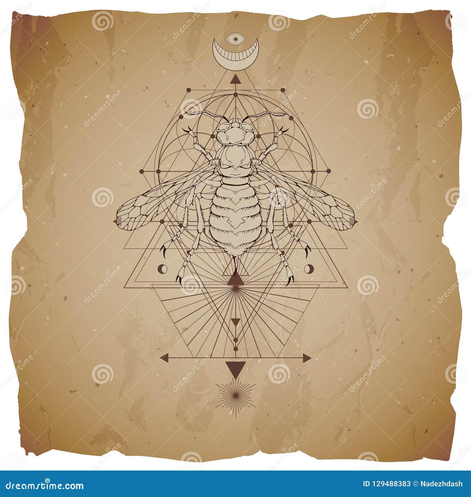 Vectorillustratie met hand getrokken wesp en Heilig geometrisch symbool op uitstekende document achtergrond met gescheurde randen